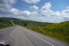 Waterton_to_Banff_011